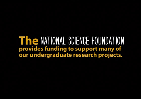 2013 Millersville University Research